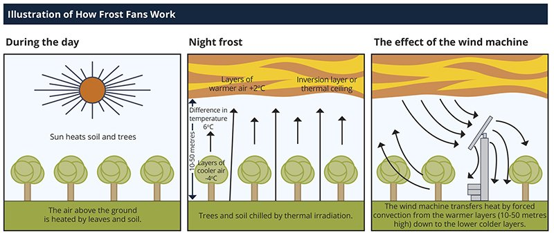 How+Frost+Fans+Work-800